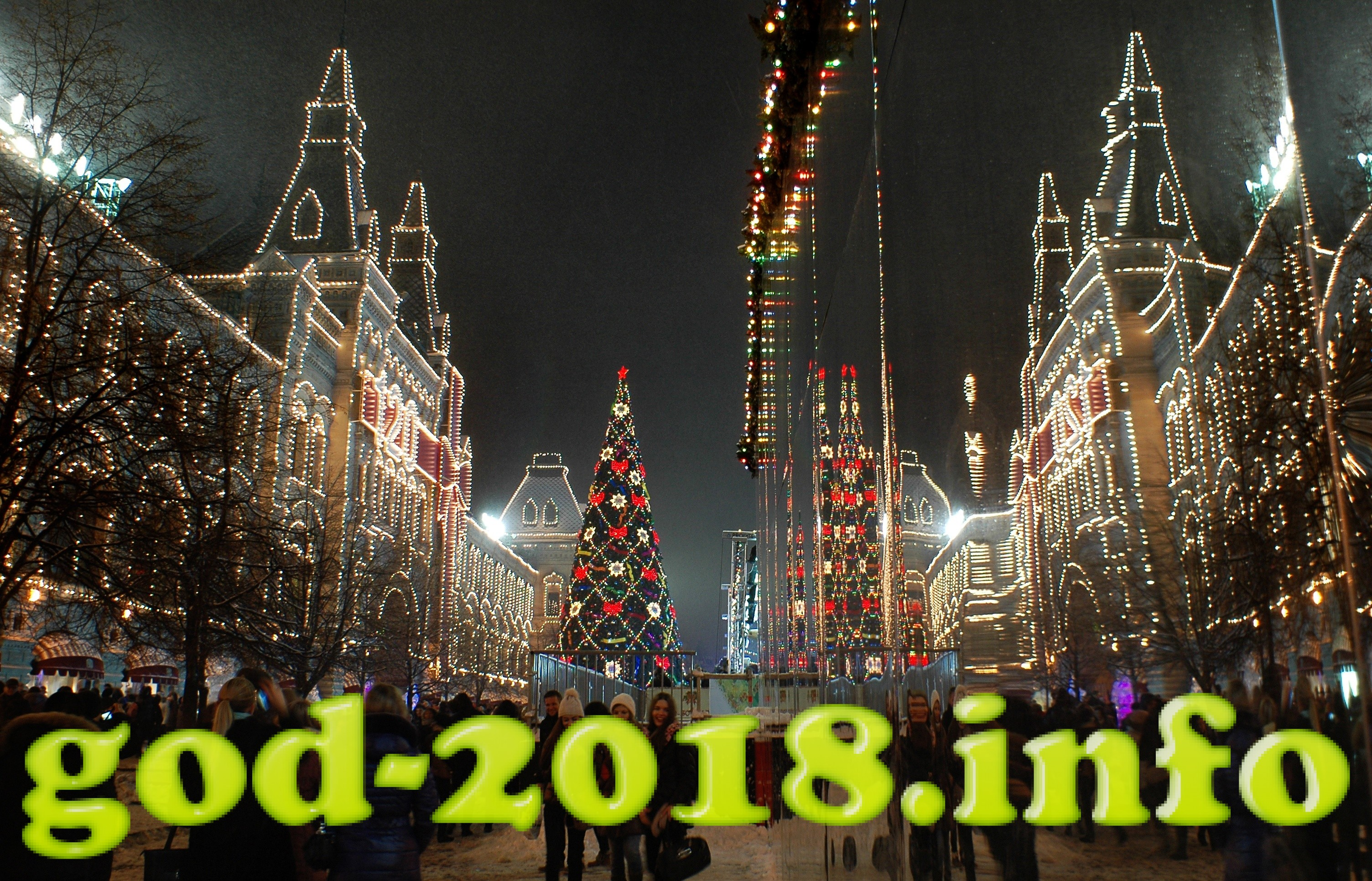 Nedorogoj Novyj god 2018 Sobaki (7)