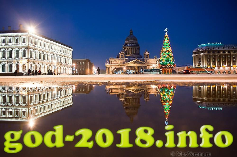 Nedorogoj Novyj god 2018 Sobaki (9)
