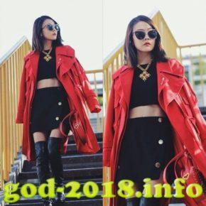 chto modno nosit zimoi 2018 goda foto (65)