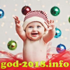 detskaja-novogodnjaja-fotosessija-novyj-god-2018-foto-2