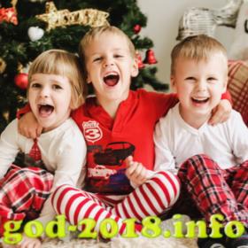 detskaja-novogodnjaja-fotosessija-novyj-god-2018-foto-3