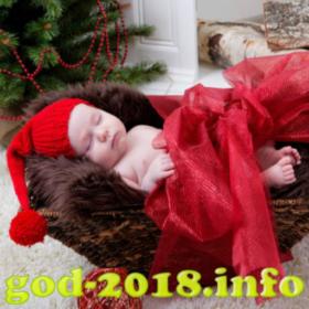 idei-dlja-novogodnih-fotosessij-novorozhdennyh-novyj-god-2018-foto