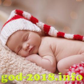 idei-dlja-novogodnih-fotosessij-novorozhdennyh-novyj-god-2018-foto-4
