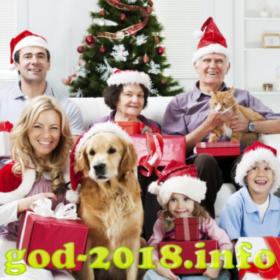kollektivnaja-novogodnjaja-fotosessija-novyj-god-2018-foto