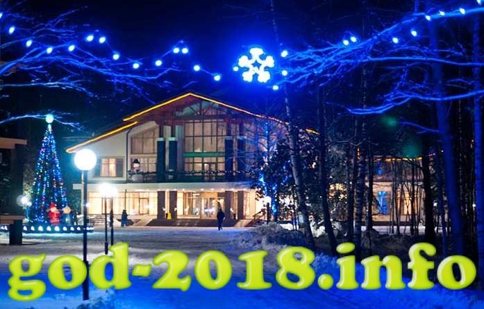 kottedzh-na-novui-god-2018-4