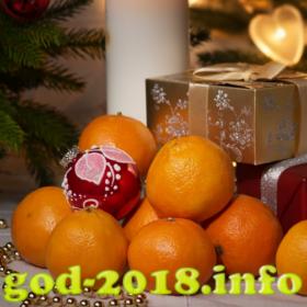 mandarinki-v-novogodnej-fotosessii-novyj-god-2018-foto-2