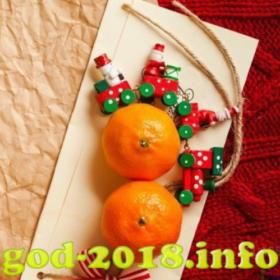 mandarinki-v-novogodnej-fotosessii-novyj-god-2018-foto-3