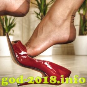 nemnogo-ob-udobstve-v-novogodnjuju-noch-novyj-god-2018-foto-4