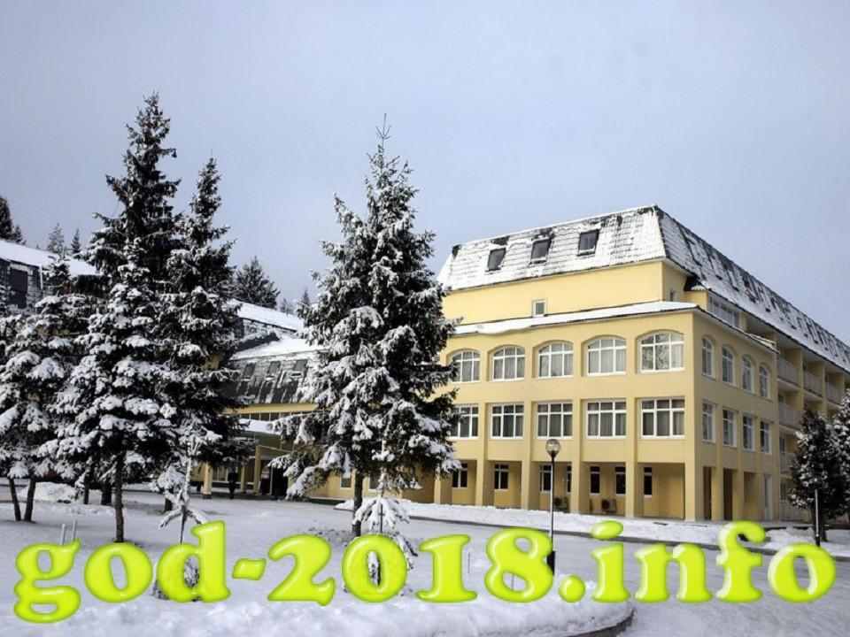 novyj-2018-god-v-podmoskove-11