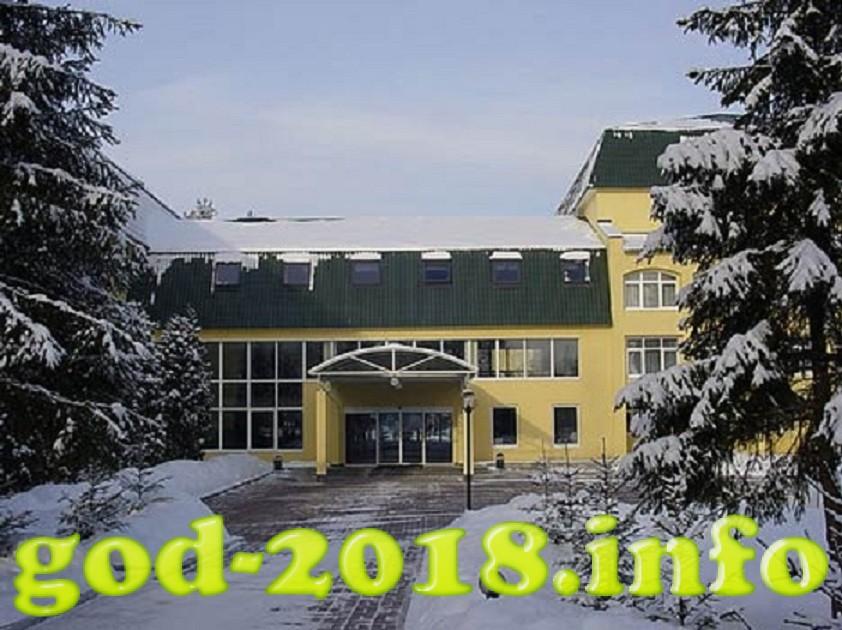 novyj-2018-god-v-podmoskove-7