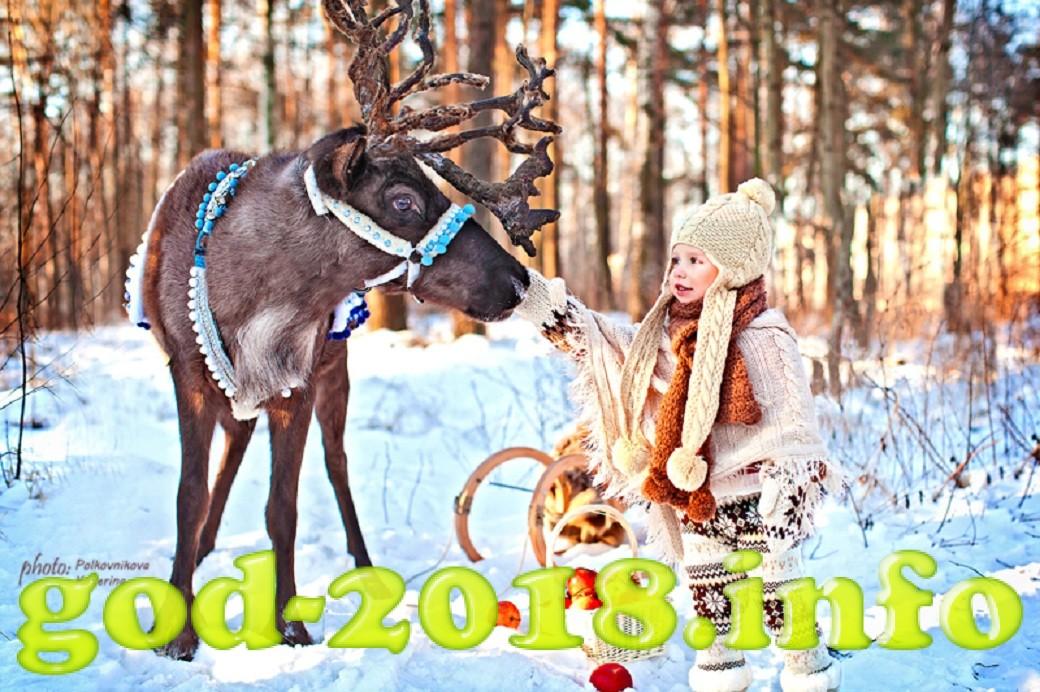 novyj-god-2018-v-moskve-kuda-shodit-12