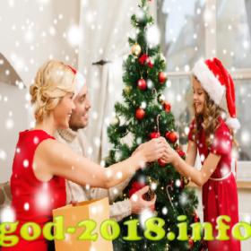 podarok-na-novyj-god-dlja-papy-s-mamoj-novyj-god-2018-foto-2
