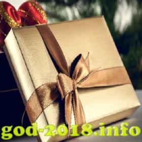 podarok-universalnogo-haraktera-novyj-god-2018-foto-2