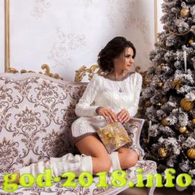 podgotovka-k-zimnej-fotosessii-novyj-god-2018-foto-2