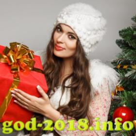 podgotovka-k-zimnej-fotosessii-novyj-god-2018-foto-4
