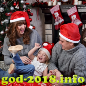 semejnaja-novogodnjaja-fotosessija-novyj-god-2018-foto-4