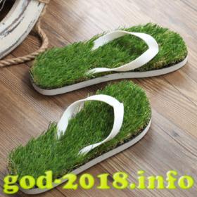 tapki-s-travoj-novyj-god-2018-foto