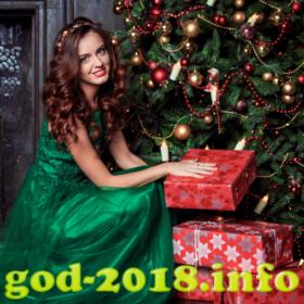vybor-mesta-dlja-novogodnej-fotosessii-novyj-god-2018-foto-2