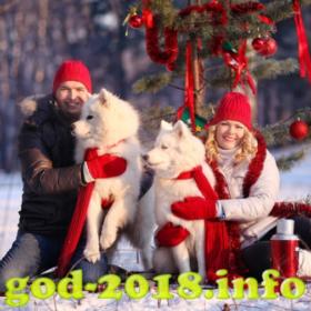 vybor-mesta-dlja-novogodnej-fotosessii-novyj-god-2018-foto-4