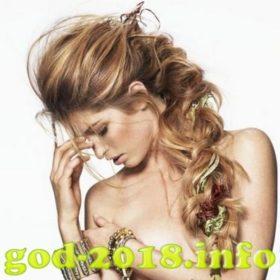 modnye-pricheski-na-novyj-2018-god-sobaki-novinki-foto-2