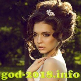 modnye-pricheski-na-novyj-2018-god-sobaki-novinki-foto-3