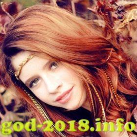 modnye-pricheski-na-novyj-2018-god-sobaki-novinki-foto