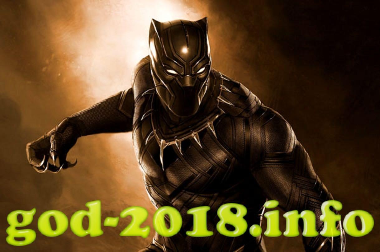 chernaja-pantera-ozhidaem-film-v-2018-godu-7