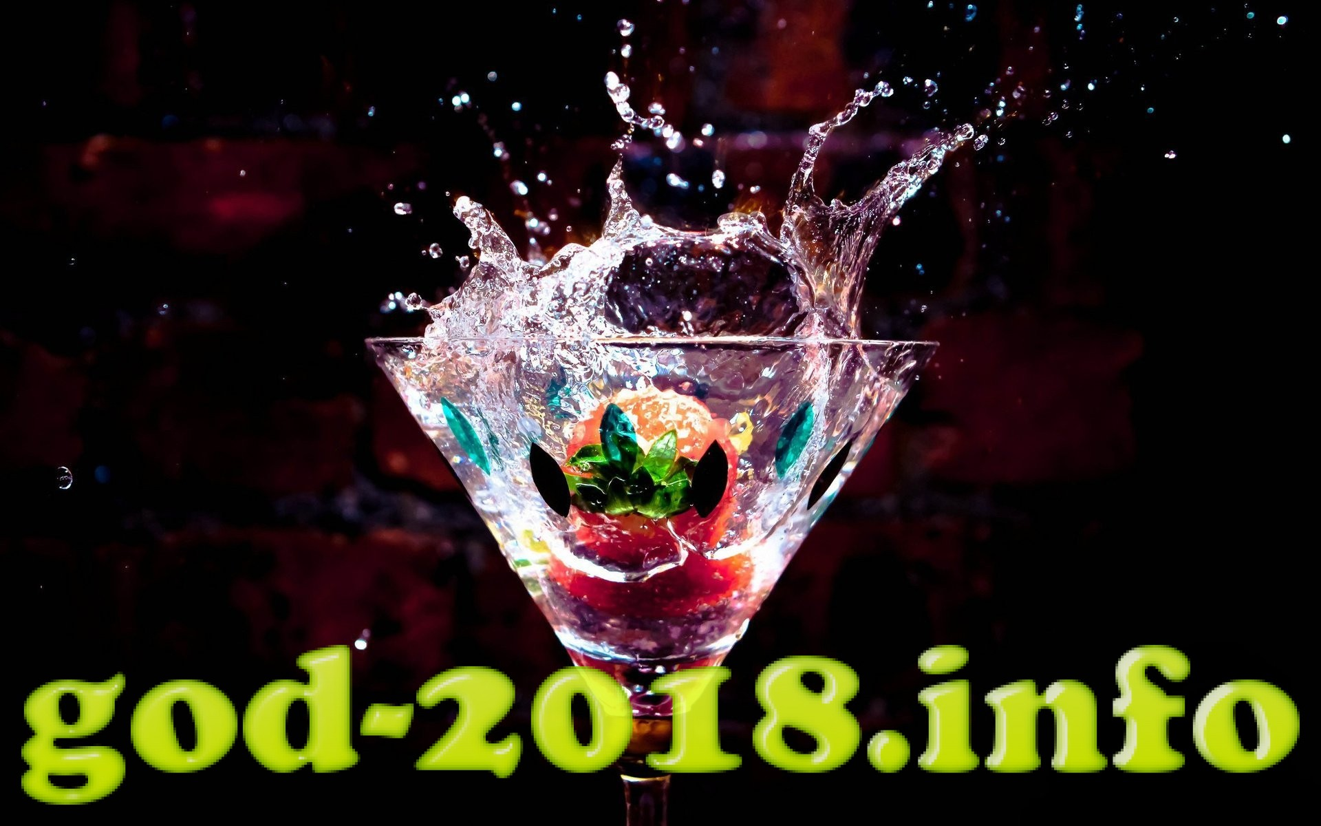 chto-pit-na-novyj-god-2018-sobaki-recepty-koktejlej