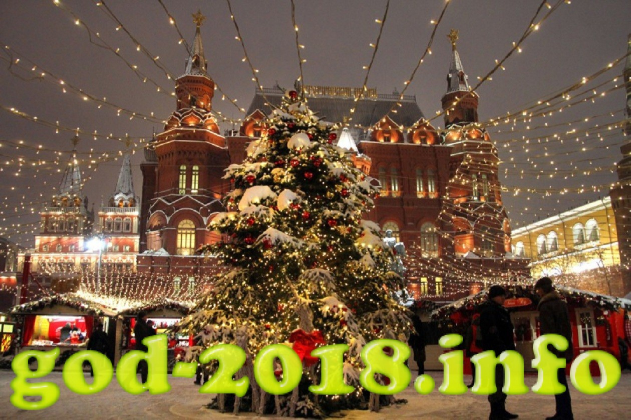 gde-vstretit-v-moskve-novyj-god-2018-goda-sobaki-3