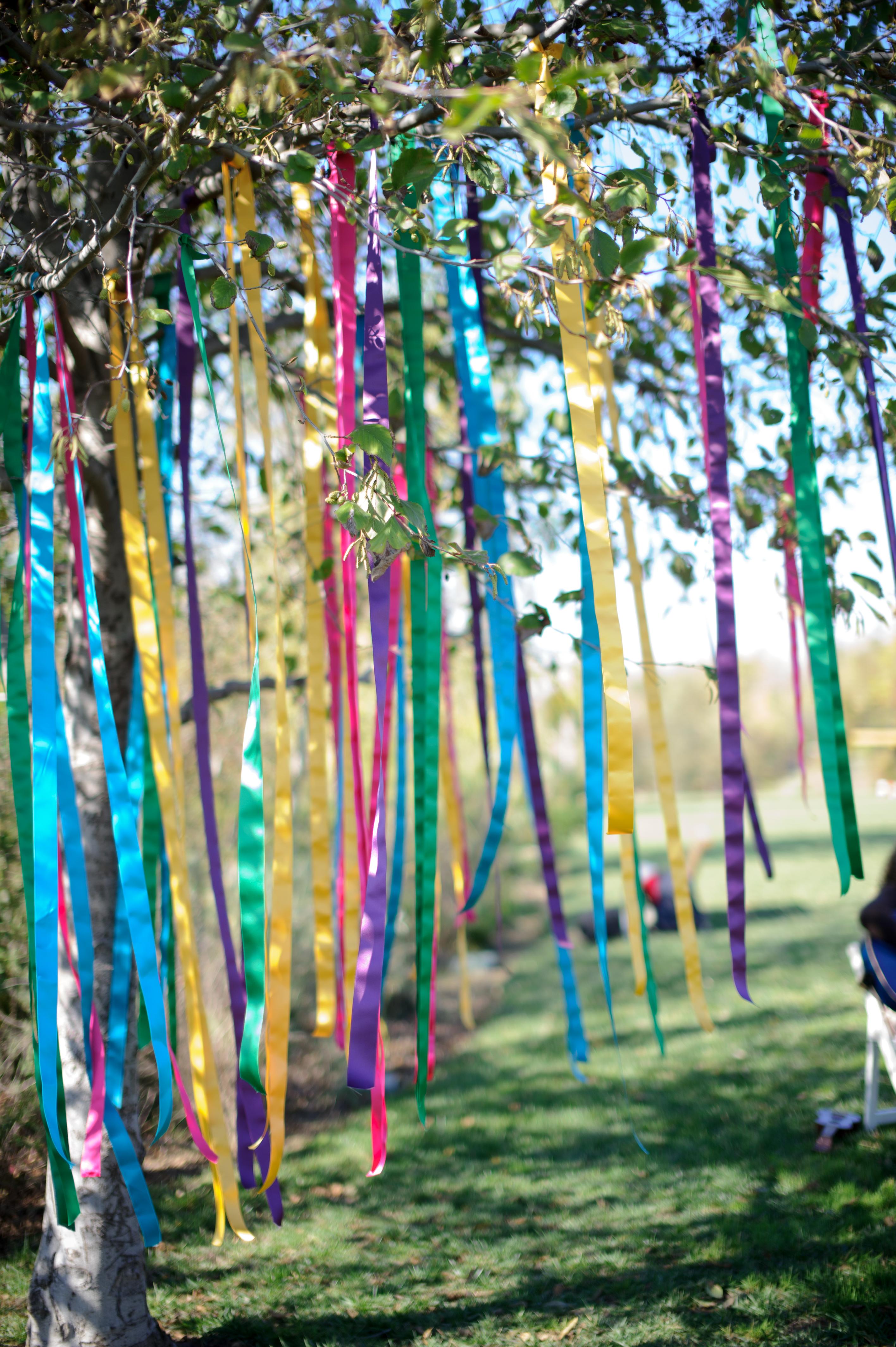 Ленты на деревьях