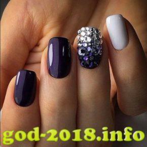 modnyj-dizajn-nogtej-2018-32